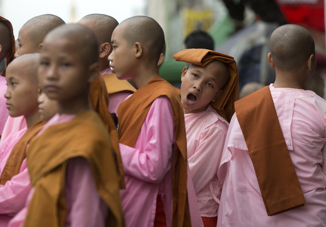 Novice Buddhist nuns line up after walking the streets to collect alms in central Yangon, Myanmar, Tuesday, November 10, 2015. (Photo by Mark Baker/AP Photo)