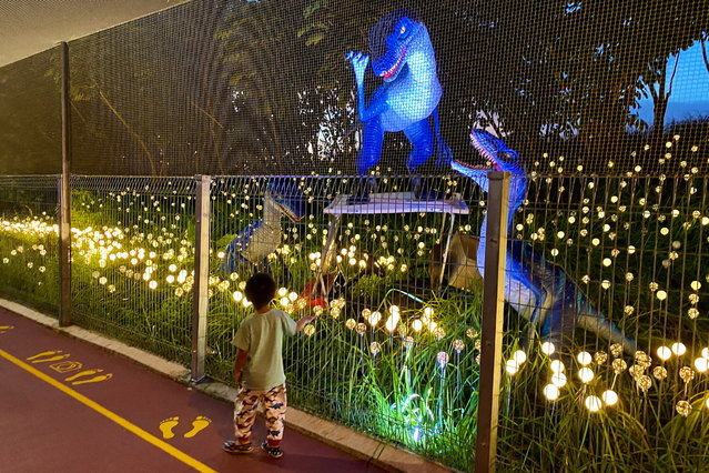 A child walks near dinosaurs exhibit along the Changi Jurassic Mile as it is light up for Christmas near Changi airport in Singapore on December 8, 2020. (Photo by Tim Chong/Reuters)