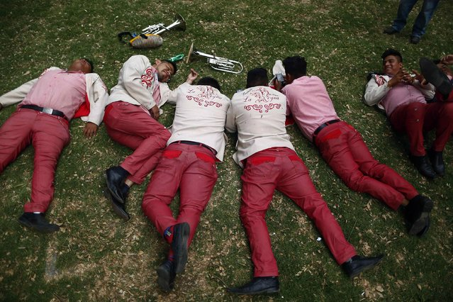 Musicians rest on the grass during a celebration 40 days after the birth of Jesus, in Xochimilco on the outskirts of Mexico City, February 2, 2015. (Photo by Edgard Garrido/Reuters)