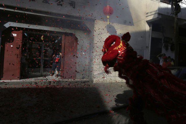 Dancers perform a Lion Dance outside a local shop during Chinese Lunar New Year celebrations at Chinatown in Panama City February 19, 2015. (Photo by Carlos Jasso/Reuters)