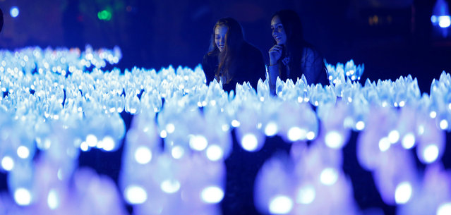 "Two girls look at ""Flower Power"" which is part of the exhibit ""Enchanted: Forest of Light"" at Descanso Gardens in La Canada Flintridge, California U.S., December 9, 2016. (Photo by Mario Anzuoni/Reuters)"