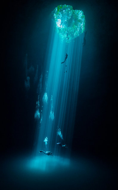 Water second place: Joram Mennes, Mexico. Three levels of leisure: swimmers, freedivers and divers enjoy their respective sport and recreational activities in a fresh water mass known locally as the Cenotes. (Photo by Joram Mennes/TNC Photo Contest 2021)
