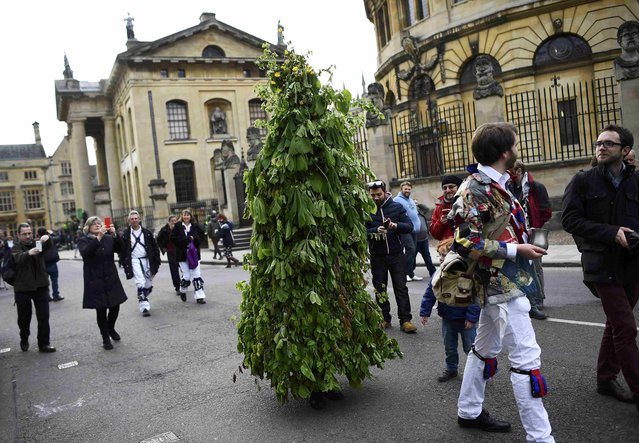 A Morris Dancer dressed as a tree walks past the Bodleian Library as they celebrate in the early hours during traditional May Day celebrations in Oxford, Britain, May 1, 2015. (Photo by Dylan Martinez/Reuters)