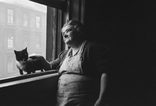 A Glaswegian woman and her pet cat at her home in the Gorbal on January 31, 1948. (Photo by Bert Hardy/Picture Post/Getty Images)