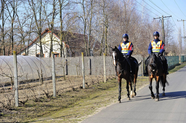 FILE - In the Feb. 13, 2015 file photo mounted police officers patrol in the vicinity of Morahalom, 179 kms southeast of Budapest, Hungary, next to the Serbian border. Hungary's foreign minister said Wednesday, June 17, 2015 the government is considering building a 4-meter-high (13-foot-high) fence along border with Serbia to stop the flow of migrants reaching the country. (AP Photo/MTI, Zoltan Gergely Kelemen)