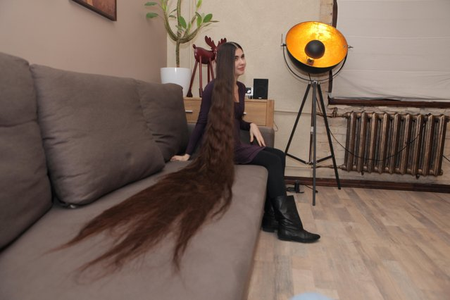 Aliia Nasyrova laying her hair on the couch to show her hair's length on March 5, 2017 in Riga, Latvia. Real-life Rapunzel Aliia Nasyrova has hair so long that her husband admits he thinks of it as another member of the family. Aliia, 27, who lives in Riga, Latvia, took 20 years to grow out her hair, which measures 90 inches to the floor – and even has its own space in the marital bed. And while her massive mane attracts stares when out in public, her husband Ivan Balaban says he loves it and is proud of her for not cutting it. Weighing in at 4.5lbs (2kg), Aliia says her lengthy locks weigh as much as the family cat. (Photo by  Eduard Kolik/Barcroft Media)