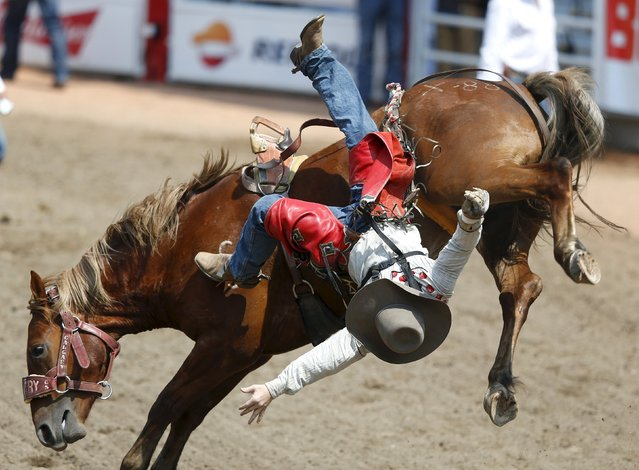 Daniel Jones of Clermont, Australia flies off the horse Xpat Cankaid in the Novice Bareback event during the Calgary Stampede rodeo in Calgary, Alberta, July 10, 2015. (Photo by Todd Korol/Reuters)