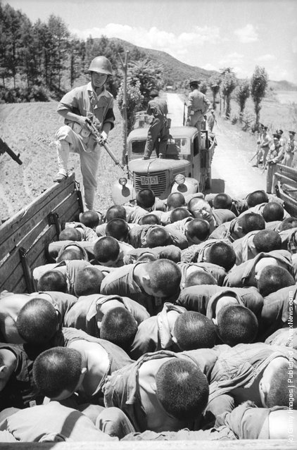 Suspected South Korean traitors are herded into lorries on their way to execution - an incident that was later investigated by a United Nations observer, 1950