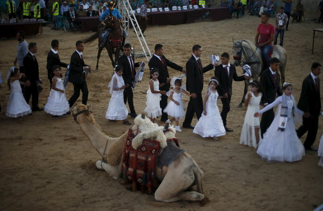 A camel is seen as Palestinian girls accompany grooms separate from the brides during a mass wedding for 150 couples in Beit Lahiya town in the northern Gaza Strip July 20, 2015. (Photo by Suhaib Salem/Reuters)