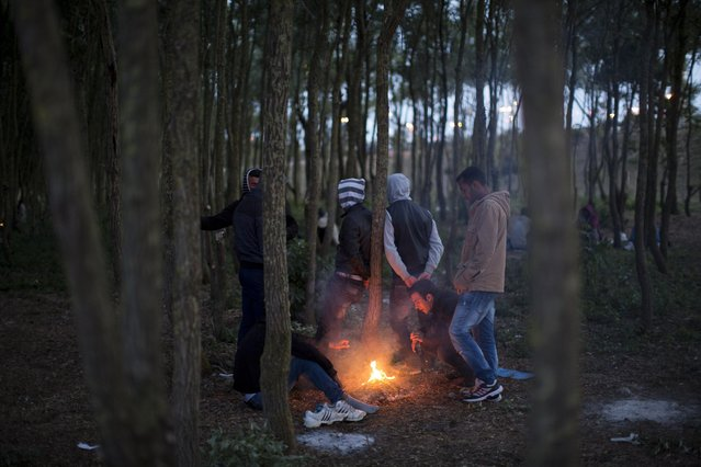 Migrants wait in a forest near to the Channel Tunnel in Calais, northern France, Tuesday, August 4, 2015. (Photo by Emilio Morenatti/AP Photo)