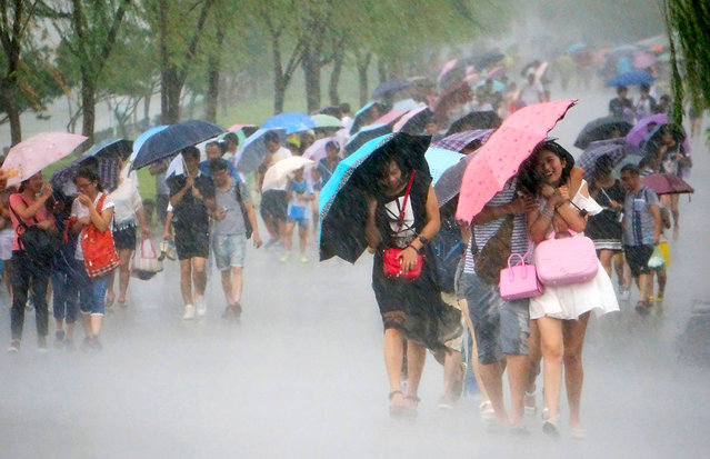 Paople use umbrellas as they walk in strong wind and heavy rain near West Lake as Typhoon Soudelor approaches on August 7, 2015 in Hangzhou, Zhejiang Province of China. Typhoon Soudelor will land on southeastern China's coastal areas this weekend, according to meteorological departments. (Photo by ChinaFotoPress/Getty Images)