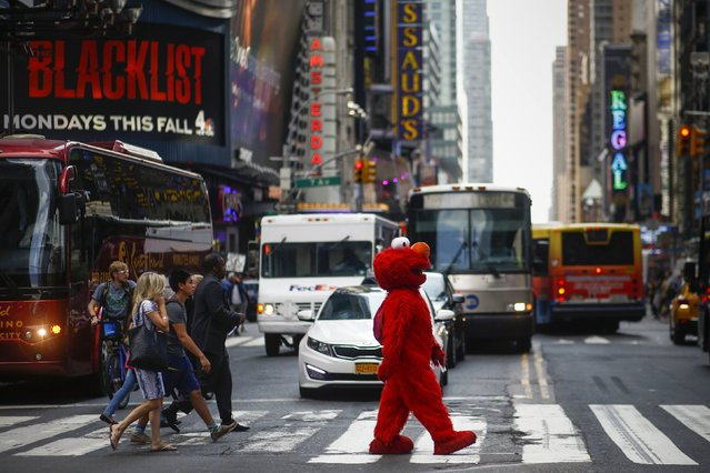Jorge, an immigrant from Mexico, walks across an intersection dressed as the Sesame Street character Elmo, in Times Square, New York July 30, 2014. (Photo by Eduardo Munoz/Reuters)