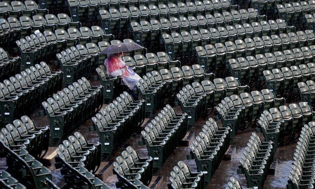 A lone fan sits in the stands as rain falls, causing a delay to a baseball game between the Houston Astros and the Texas Rangers, in Arlington,Texas, Friday, June 2, 2017. (Photo by L.M. Otero/AP Photo)