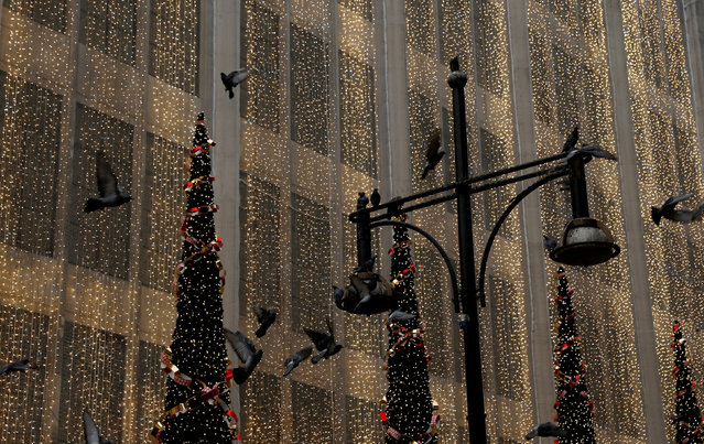 Pigeons fly in front of the Christmas lights on the facade of House of Fraser department store on Oxford Street in London, Britain December 3, 2017. (Photo by Darrin Zammit Lupi/Reuters)