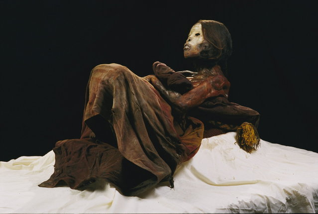 """Peru. The """"œIce Maiden"""" the 500-year-old mummy of a young Inca girl found on a Peruvian mountaintop by archaeologist and National Geographic Explorer-in-Residence Johan Reinhard. (Photo by Stephen Alvarez"""