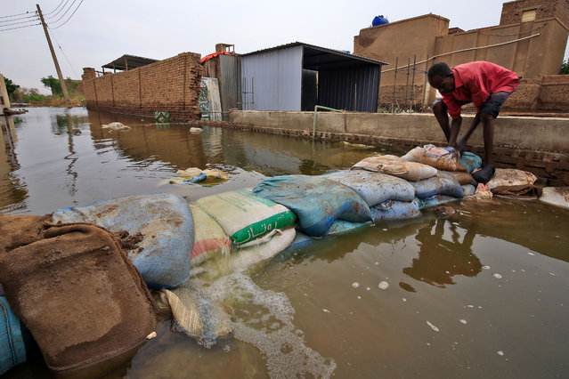 A Sudanese man build a barricade amidst flood waters in Tuti island, where the Blue and White Nile merge between the twin cities of the capital Khartoum and Omdurman, on September 3, 2020. On Tuti Island, the highest Nile waters since records began a century ago have left people struggling to build dams by filling bags with sand and small stones to stem the flood. Officials say that across Sudan seasonal floods have killed 94 people, injured 46 and destroyed or damaged over 60,000 homes, with the river level rising to 17.43 metres (57 feet feet). (Photo by Ashraf Shazly/AFP Photo)
