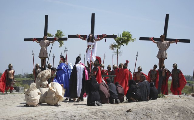 Filipino penitent Ruben Enaje, center, who has portrayed as Jesus Christ for 27 times, is nailed on the cross as he leads others in a reenactment of the crucifixion of Jesus Christ during Good Friday rituals on March 29, 2013 at Cutud, Pampanga province, northern Philippines. Several Filipino devotees had themselves nailed to crosses Friday to remember Jesus Christ's suffering and death, an annual rite rejected by church leaders in this predominantly Roman Catholic country. (Photo by Aaron Favila/AP Photo)