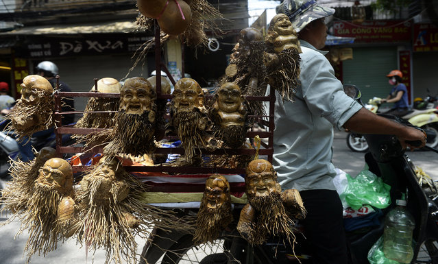 A man carries on his motorbike bamboo root-carved statues of happiness and longivity gods in Hanoi on June 26, 2013. Very popular in Vietnam, bamboo trees can be crafted into various different items in households across the country. (Photo by Hoang Dinh Nam/AFP Photo)