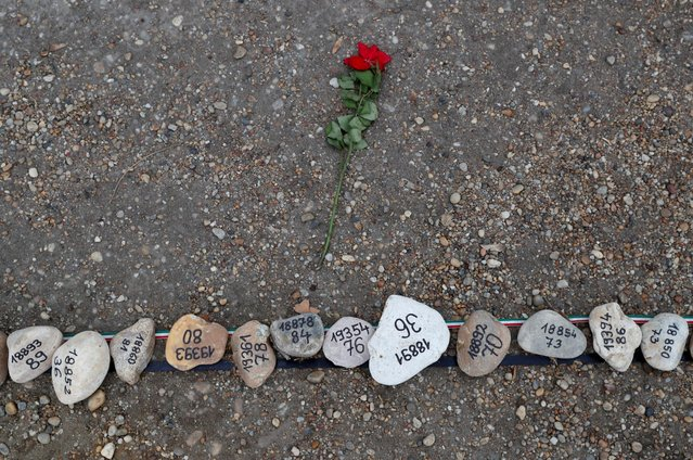A flower lies next to the stones placed to commemorate Hungary's coronavirus disease (COVID-19) victims on Margaret Island in Budapest, Hungary, April 6, 2021. (Photo by Bernadett Szabo/Reuters)