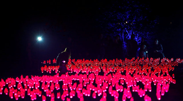 """A person poses by """"Flower Power"""" which is part of the exhibit """"Enchanted: Forest of Light"""" at Descanso Gardens in La Canada Flintridge, California U.S., December 9, 2016. (Photo by Mario Anzuoni/Reuters)"""