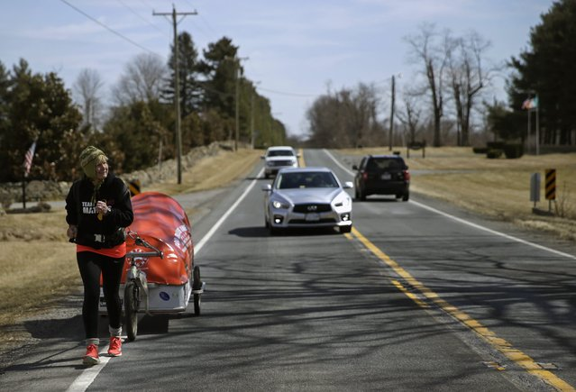 """Sixty-eight year old cross-country runner Rosie Swale-Pope runs on U.S. Route 50 while pulling her cart, """"The Icebird"""", in Upperville, Virginia March 13, 2015. (Photo by Gary Cameron/Reuters)"""
