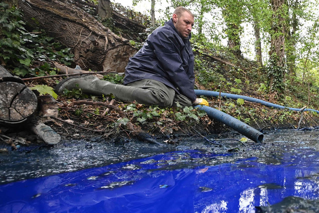 A worker uses a tube to cleanup a stream polluted by blue colour ink on April 29, 2021, following an accident at a print plant near in Ghlin, Belgium. (Photo by David Stockman/Belga/AFP Photo)