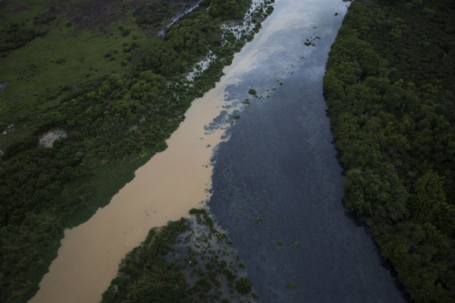 This aerial view show the polluted water channels that rim the Barra neighborhood in Rio de Janeiro, Brazil, Monday, March 23, 2015. (Photo by Felipe Dana/AP Photo)
