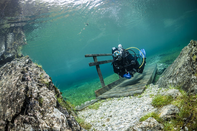 A diver crossing a bridge in the flood water. Green Lake in Tragoess, Austria. (Photo by Solnet/The Grosby Group)