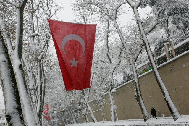 A woman walks under snow-covered trees during a snowfall in Istanbul, Turkey January 7, 2017. (Photo by Murad Sezer/Reuters)