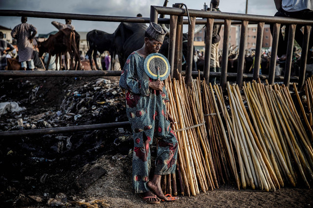 A Hausa-Fulani man selling herdsmen's sticks waits for costumers at Kara Cattle Market in Lagos, Nigeria, on April 10, 2019. (Photo by Luis Tato/AFP Photo)