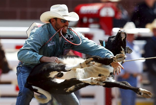 Cade Swor of Chico, Texas flips a calf in the Tie-Down Roping event during the Calgary Stampede rodeo in Calgary, Alberta, July 10, 2015. (Photo by Todd Korol/Reuters)