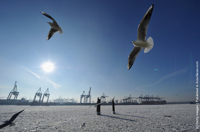 A view of the ice on the river Elbe on February