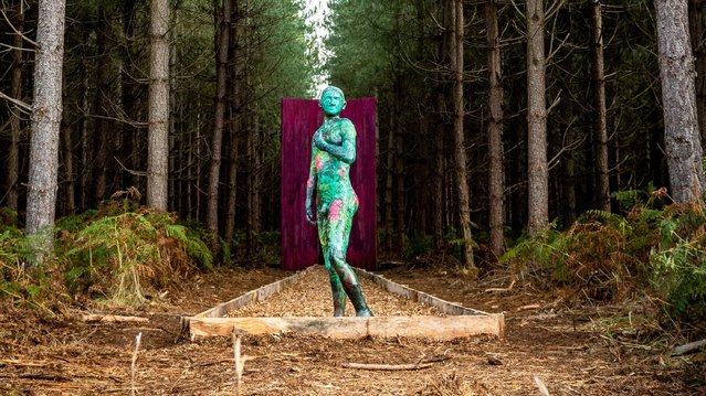 Sculpture entitled David & Daphne part of the Future Forest exhibition in Thetford forest, Norfolk on October 10, 2019 created by acclaimed artists Tom Piper and Lisa Wright as part of Foresty England's centenary celebrations. (Photo by James Linsell-Clark/South West News Service)