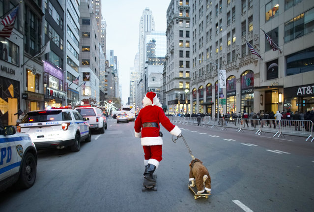A man dressed as Santa Claus skateboards down Fifth Avenue towing a dog before the annual Christmas tree lighting ceremony at Rockefeller Center in New York on December 5, 2019. (Photo by John Angelillo/UPI/Barcroft Media)