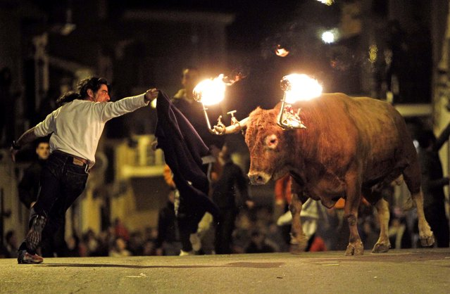 In this January 17, 2010 file photo, a reveler runs away from a bull with flaming horns during a festivity in honor of Saint Anthony, the patron saint of animals, in the streets of Gilet, a town near Valencia, Spain. The city of Valencia has banned a longtime tradition where bulls are set loose on neighborhood streets with flaming balls of wax or fireworks affixed to their horns. Mayor Joan Ribo cited cruelty to animals for the ban approved Friday, June 10, 2016. The city council also cut funding for bull runs and bullfighting schools but did not move to ban bullfighting. (Photo by Alberto Saiz/AP Photo)