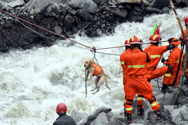 Rescue workers pull a rescue dog across a river at the site of a landslide in the village of Xinmo, Mao County, Sichuan Province, China June 25, 2017. (Photo by An Yuan/Reuters/CNS)
