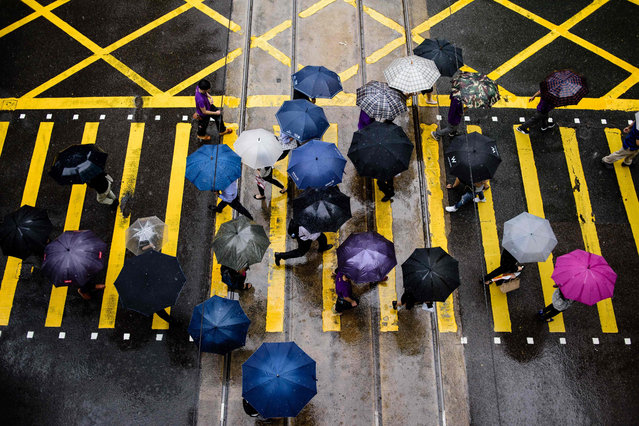 Pedestrians use umbrellas to shield themselves from the rain as they walk across a main road in Hong Kong on May 24, 2017. (Photo by Anthony Wallace/AFP Photo)