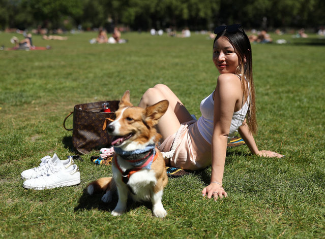 Clarice Hui and her Corgi dog Padfoot enjoying the hot weather in London Fields park, east London on May 19, 2020, after the introduction of measures to bring the country out of lockdown. (Photo by Yui Mok/PA Images via Getty Images)