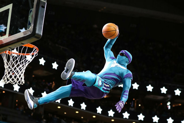 Charlotte Hornets mascot makes a dunk during a break in the second half against the LA Clippers at Spectrum Center in Charlotte, NC, USA on November 18, 2017. (Photo by Jim Dedmon/USA TODAY Sports)