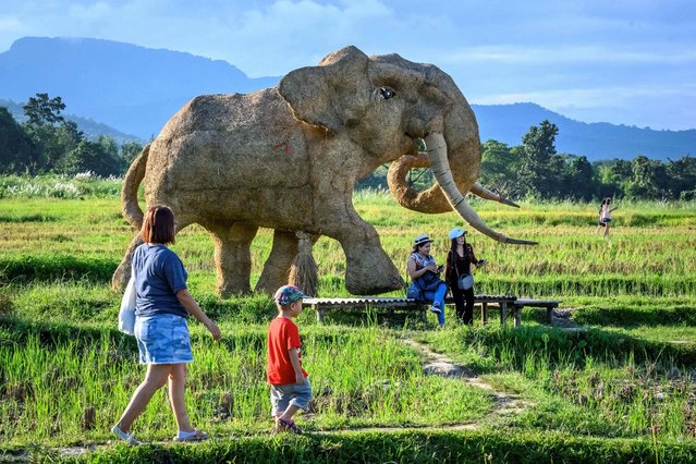 This photo taken on November 1, 2020 shows tourists taking photographs of the figure of an elephant made of rice straw in an amusement park on the shores of Huay Tueng Thao lake outside Chiang Mai. (Photo by Mladen Antonov/AFP Photo)