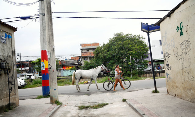 A woman pulls a horse as she walks with her daughter during a police operation against drug dealers in Cidade de Deus or City of God slum in Rio de Janeiro, Brazil, November 23, 2016. (Photo by Ricardo Moraes/Reuters)