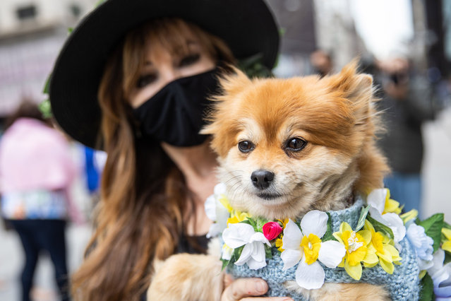 A woman holds a dog in costume during the Easter Bonnet parade on Fifth Avenue in midtown on April 4, 2021 in New York City. The annual Easter Parade and Bonnet Festival on Fifth Avenue is going virtual for the second year, while COVID-19 safety protocols will be in place for Sunday's Mass at Saint Patrick's Cathedral. (Photo by Jeenah Moon/Getty Images)