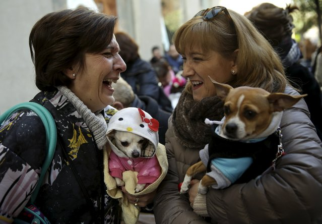 Two women laugh holding their dogs as they wait in line for them to be blessed outside San Anton Church in Madrid, Spain, January 17, 2016. (Photo by Andrea Comas/Reuters)