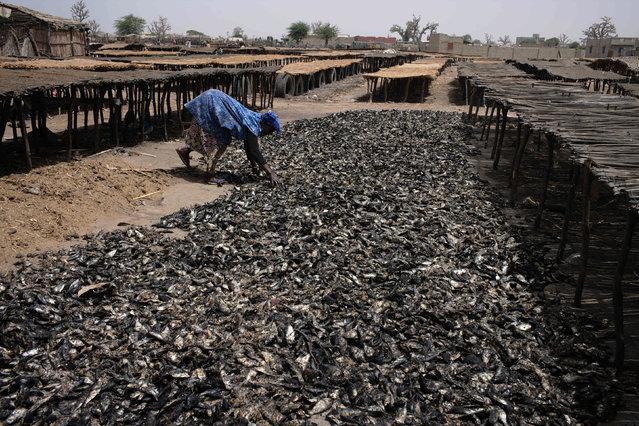 A woman sorts through fish at an artisanal fish processing facility in the coastal town of Joal-Fadiouth, Senegal, April 10, 2018. (Photo by Sylvain Cherkaoui/Reuters)