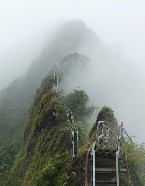 Stairway To Heaven In Hawaii