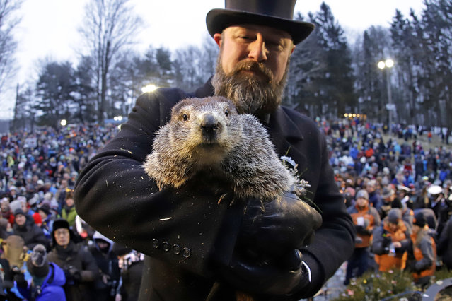 Groundhog Club co-handler Al Dereume holds Punxsutawney Phil, the weather prognosticating groundhog, in front of the crowd gathered for the 133rd celebration of Groundhog Day on Gobbler's Knob in Punxsutawney, Pa. Saturday, February 2, 2019. Phil's handlers said that the groundhog has forecast an early spring. (AP Photo/Gene J. Puskar)