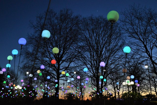 """The dark of winter is depressing, especially in January, after the Christmas lights are gone. The Canary Wharf Winter Lights exhibition brings some welcome light and brightens up dark London days for a brief period"". (Photo by Laureen Katiyo/The Guardian)"