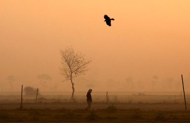 A man walks through a vegetable field on a foggy winter morning in New Delhi, India, December 18, 2018. (Photo by Anushree Fadnavis/Reuters)