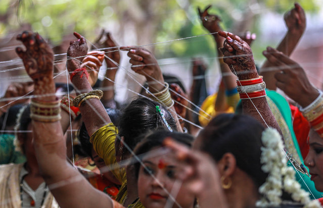 Hindu married women perform rituals around a banyan tree on the holy occasion of the Vat Savitri (also called Vat Purnima) Festival in Ahmedabad, India, 16 June 2019. This day is observed by Hindu married women for the long life of their husbands by having a day-long fast and worship of the Banyan Tree. (Photo by Divyakant Solanki/EPA/EFE)