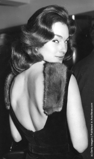 The British actress Shirley Ann Field attends a Variety Club Charity Luncheon at the Savoy Hotel, London, dressed in a mink-trimmed backless dress